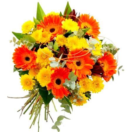 תמונה עבור הקטגוריה זרים וסידורי פרחים
